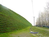 -  - Mechanically Stabilized Earth (MSE) Berm